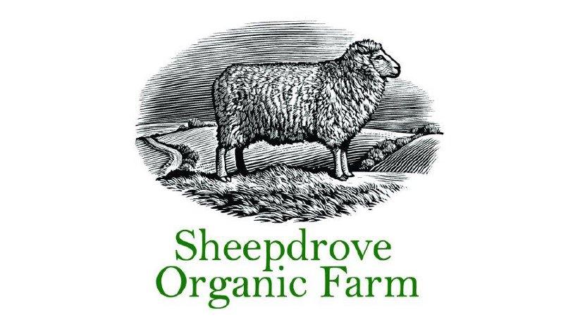 sheepdrove organic farm
