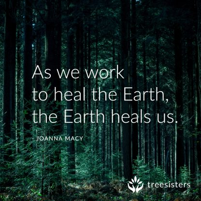 tree sisters quote