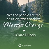 clare dubois quote tree sisters
