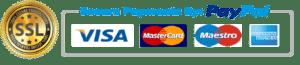 SSL secure online payment portal
