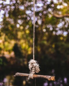 rope swing in the woods